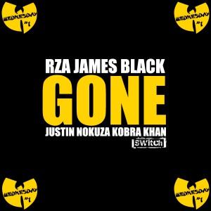 rza gone zona hip hop